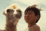'Celestial Camel' – estreno en cines 16 de febrero